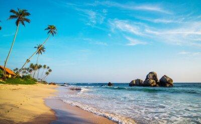 Fototapeta dzikie piękne plaże Sri Lance