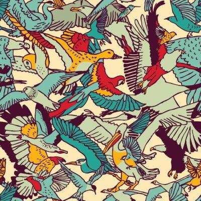 Fototapeta Dzikie ptaki przyrody kolor szwu wzór