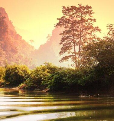Fototapeta Dżungla w Wietnamie