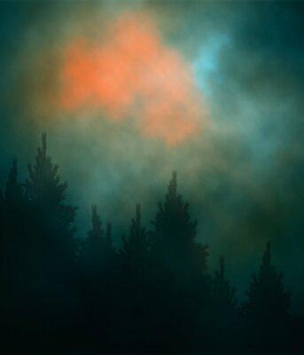 Fototapeta Edycji ilustracji wektorowych pochmurny wieczór niebo nad lasów iglastych utworzony za pomocą siatki gradientu