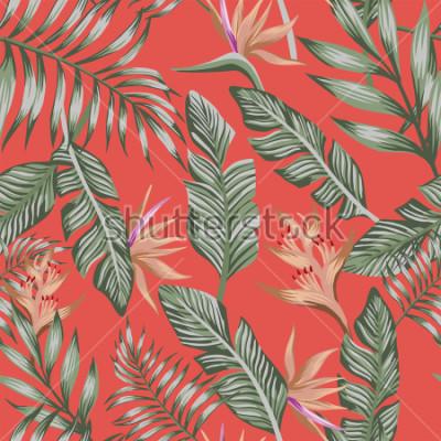 Fototapeta Egzotyczna tropikalna zielona palma opuszcza brązowe tropikalne kwiaty ptasiego raju