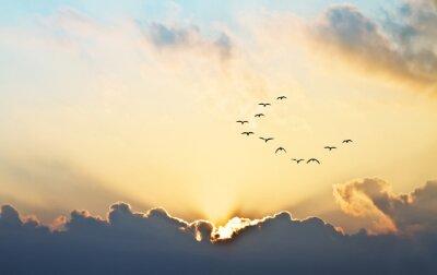 Fototapeta El Sol Asoma entre las se nubes