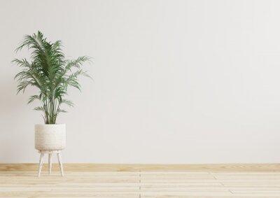 Fototapeta Empty room white walls with beautiful plants sideways on the floor.3d rendering.