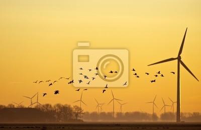 Energia wiatrowa i latające ptaki na wschód słońca
