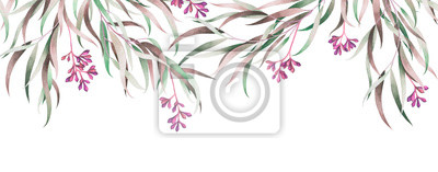 Eucalyptus branches isolated on white. Watercolor hand drawn illustration.