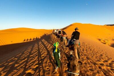 European tourists in Sahara Desert during sunset, Merzouga, Morocco