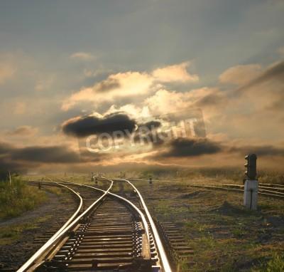 Fototapeta evening landscape with railroad rails