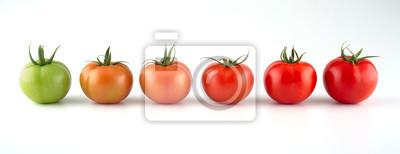 Fototapeta Ewolucja odizolowywająca na białym tle czerwony pomidor