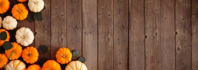 Fototapeta Fall corner border of pumpkins and eucalyptus leaves against a rustic dark wood banner background. Above view with copy space.