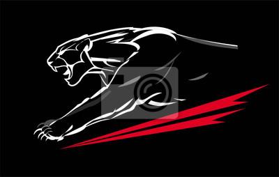 Fototapeta Fang twarzy muskularna pantera, rycząc i czołgając się w ciemności. biała linia na czarnym tle. ładowanie pantery o lekkim kształcie.