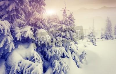 Fototapeta Fantastyczny wieczór zimowy krajobraz. Dramatycznie zachmurzone niebo. Kolaż kreatywności. Świat piękna.