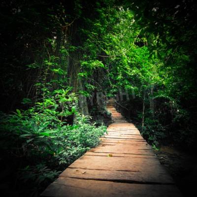 Fototapeta Fantasy dżungli głęboki las w ciemnych kolorach. Drewniana droga droga przez tropikalne drzewa. Koncepcja krajobraz dla tajemniczego tła