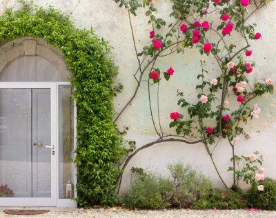 Fototapeta Fasada budynku historyczne Objętych Ivy and Roses