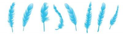 Fototapeta feather icons set. set of feathers. blue feathers.