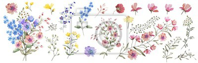 Fototapeta Field flowers.  Watercolor illustration. Botanical collection of wild and garden plants. Set: different wild flowers, pink, blue, yellow, leaves, bouquets,branches,  herbs and other natural elements.