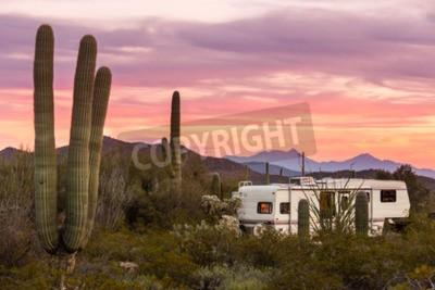 Fototapeta Fifth Wheeler RV parked on campsite in Sonoran Desert beside Saguaro Cacti