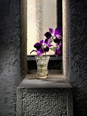 Fototapeta Fiore nel davanzale in cemento