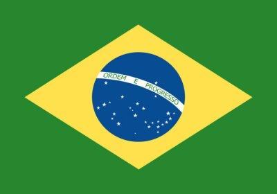 Fototapeta Flaga Brazylii