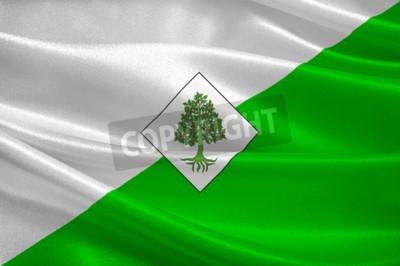 Fototapeta Flaga Lloret de Mar jest śródziemnomorskim miastem przybrzeżnym w Katalonii w Hiszpanii. 3d ilustracja