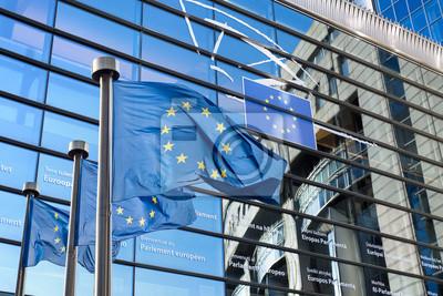 Fototapeta Flaga Unii Europejskiej przed Parlamentem Europejskim