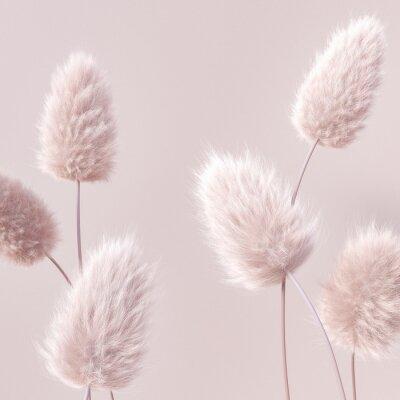 Fototapeta Floral fluffy boho pastel beige color background, beautiful botanic calm inspiration 3d rendering