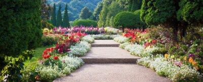 Fototapeta Flower Garden