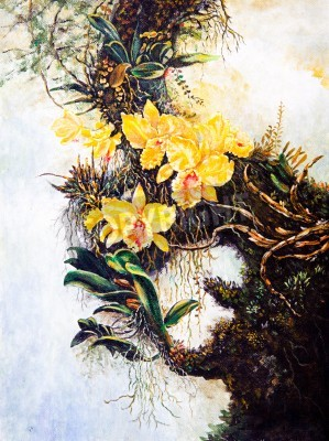Fototapeta Flower on the tree of oil painting