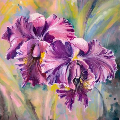Fototapeta Flowers.Watercolors orchidea