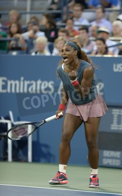 Fototapeta FLUSHING, NY - AUGUST 29   Sixteen times Grand Slam champion Serena Williams during her first round doubles match with teammate Venus Williams at US Open 2013  at Billie Jean King National Tennis Cent