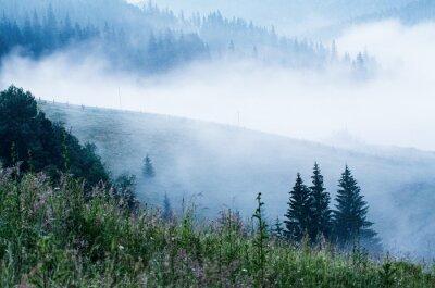 Fototapeta Foggy morning landscape
