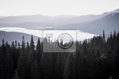 Foggy rano krajobraz z pasmo górskie i Jodła lasu w hipster zabytkowe stylu retro