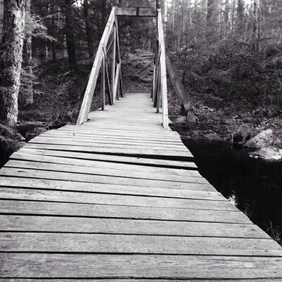 Fototapeta footbridge