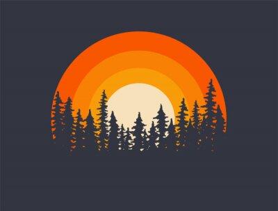 Fototapeta Forest landscape trees silhouettes with sunset on background. T-shirt or poster design illustration. Vector illustration