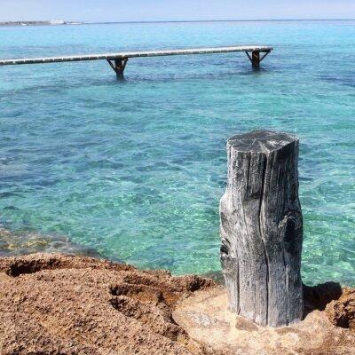 drewniane morze