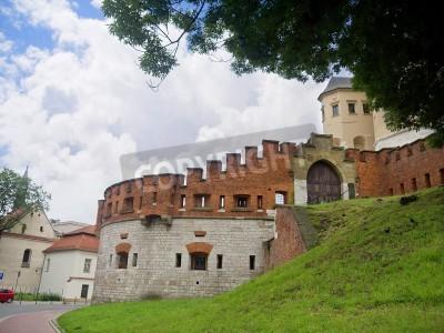 Fototapeta Fortyfikacje Wawelu Kraków Polska