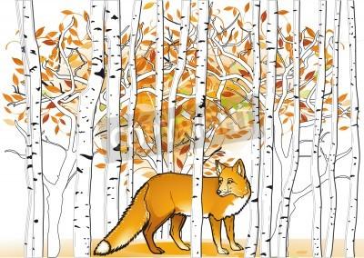 Fototapeta Fox w lesie