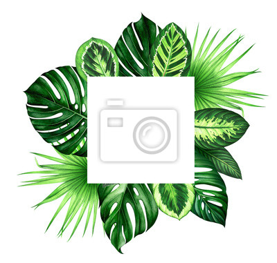 Frame with tropical leaves. Hand drawn watercolor illustration.