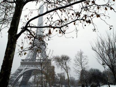 Fototapeta France Paris trocadero pod śniegiem