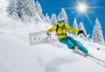 Fototapeta Freeride w świeżym śniegu w proszku. Jazda na nartach.