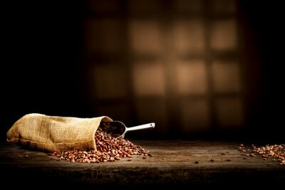 Fresh coffee grains in sack and dark interior with sadows.Copy space for your decoration.