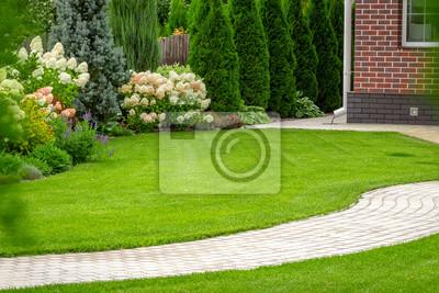 Fototapeta Freshly cut grass in the backyard of a private house.