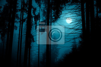 Fototapeta Full moon through the spruce trees in magic mystery night forest. Halloween backdrop.