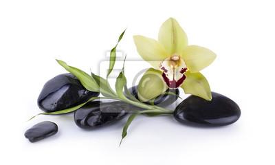 Galets Noir et Orchidee