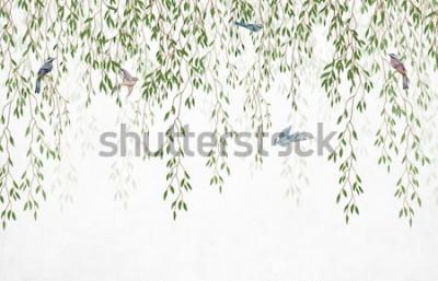 Fototapeta Gałęzie wierzby zwisające z góry z ptakami na białym tle. Tapety, murale i malowidła ścienne do zadruku wnętrz.