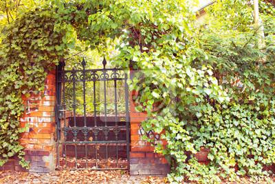 Fototapeta Garden Gate