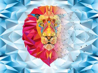 Fototapeta Głowa lwa w geometryczny wzór z linii wektora gwiazda