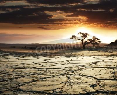 Fototapeta Gobi desert
