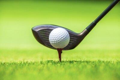 Fototapeta Golf piłkę za kierowcą na driving range