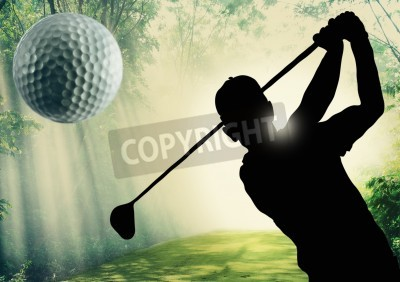 Fototapeta Golfer putting a ball on the green of a golf course