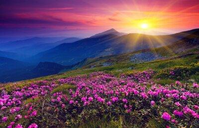 Fototapeta Górski krajobraz